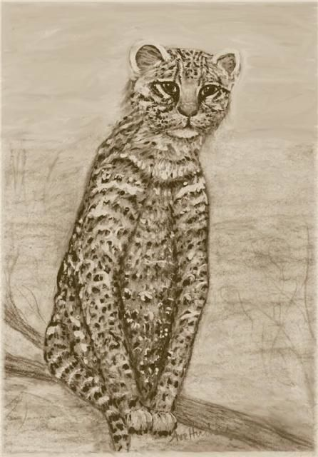 """Painting titled """"Ocelot Watching"""" by Ave Cosgriff Hurley, Original Art,"""