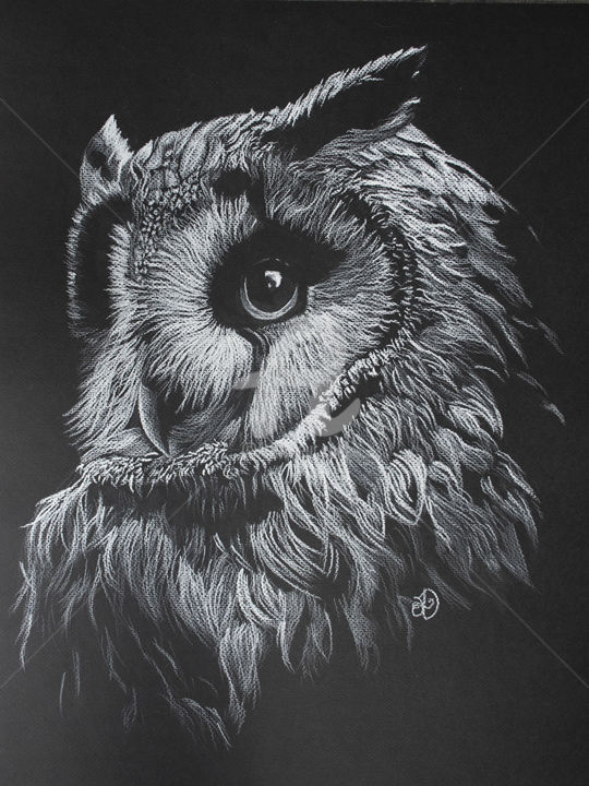 White owl drawing by audrey delaye artmajeur