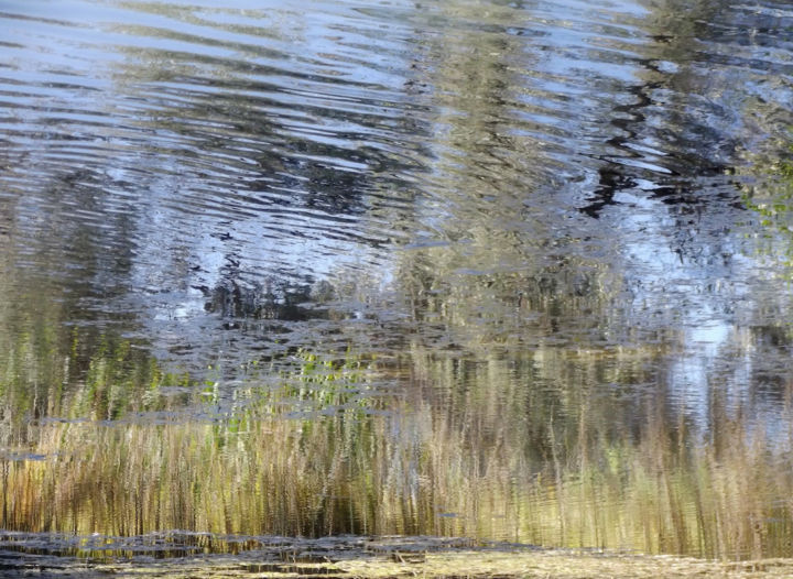 IMPRESSIONISM XXX: Ltd. Ed. 1/12 on Large Canvas - Photography,  38x52x1.5 in, ©2018 by Curtis H. Jones -                                                                                                                                                                                                                                                                                                                                                                                                                                                                                                  Abstract, abstract-570, Botanic, Colors, Love / Romance, Nature, Spirituality, fine art nature photography, impressionism photography, Limited Edition