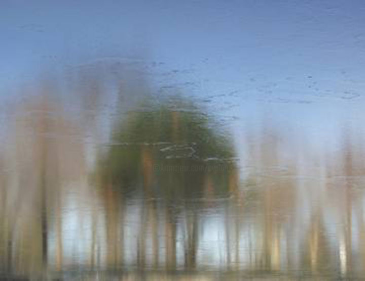 IMPRESSIONISM XXIII: Ltd. Ed. 1/12 - Large Canvas - Photography,  38x52x1.5 in, ©2018 by Curtis H. Jones -                                                                                                                                                                                                                                                                                                                                                                                                                                                                                                                                                                                                                                                                                                                                                                                                                                                                                                                                                                                                                                                  Classicism, classicism-933, Botanic, Fairytales, Fantasy, Health & Beauty, Landscape, impressionism photography, contemporary impressionism art, contemporary photographer, large impressionism print, blue impressionism, green impressionism, impressionism tree canvas, tree photography, impressionism art photography, chicago art, chicago photography, chicago art photgoraphy, chicago art impressionism, chicago landscape photography, Limited Edition