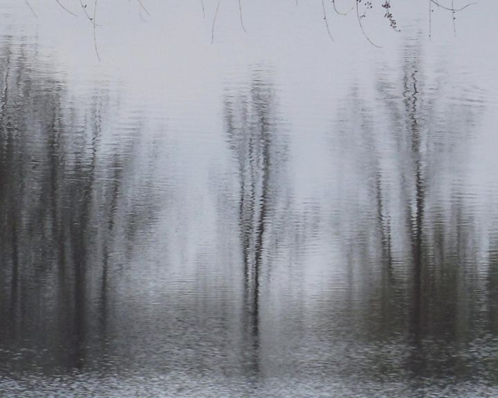 BLACK and WHITE III-b, Ltd. Ed. 1/12 - Large Canvas - Photography,  38x52x1.5 in, ©2012 by Curtis H. Jones -                                                                                                                                                                                                                                                                                                                                                                                                                                                                                                                                                                                                                                                                                                                                                                                                                                                                                                              Impressionism, impressionism-603, Nature, Seasons, Water, Botanic, Places, nature, nature photography, water, trees, winter, autumn, black and white photography, black & white, fine art photography, Limited Edition, B&W nature, fine art nature photography