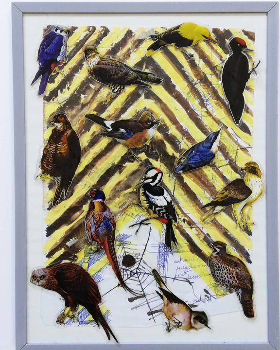 Birds - Collages,  9.5x7.1 in, ©2011 by Baptiste Vanweydeveldt -                                                                                                                                                                                                                                                                                                                                                                                                                                                                                                                                                                                                                                                                                                                                                                          Pop Art, pop-art-615, Animals, Colors, Nature, Birds, Baptistevwart, Baptiste vanweydeveldt, Collage, Gouache, Éthologie, Oiseaux, Zebra, Jaune et noir, Abécédaire encadré scellé, Faune sylvestre