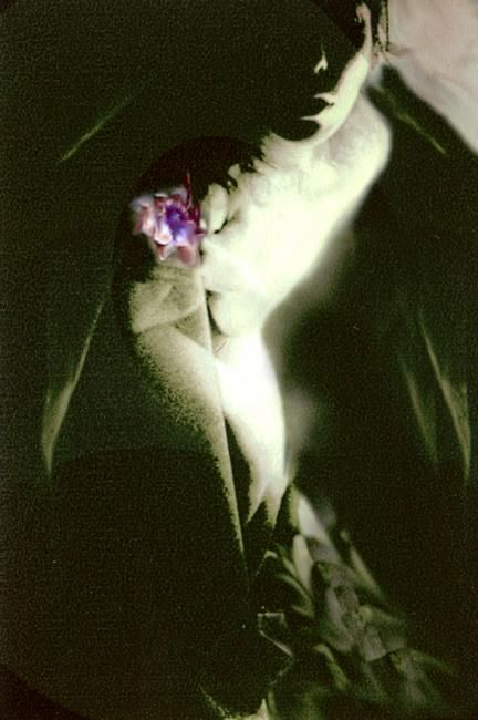 Immanence 1 - Photography, ©2003 by Barbara E.Lezmy -