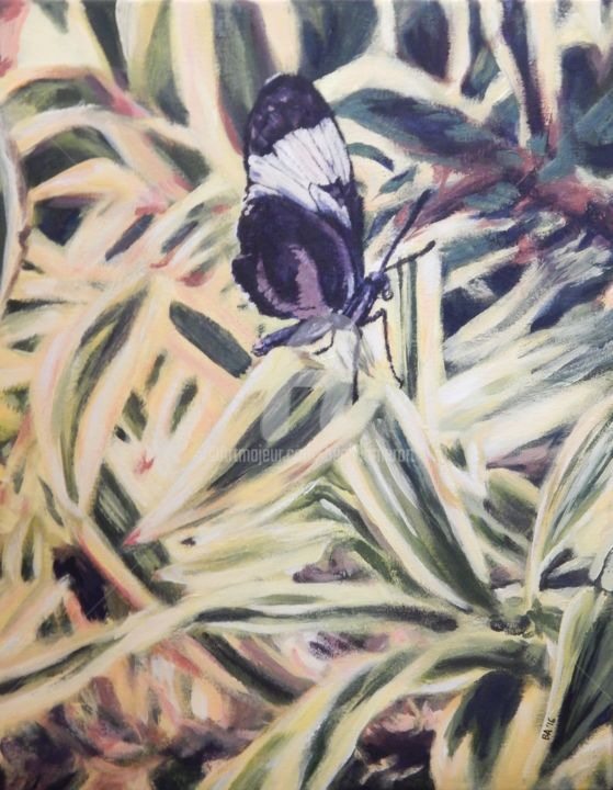 Butterfly 2 - Painting,  20x16 in ©2016 by Becky Arner -                                                                                                                        Photorealism, Realism, Canvas, Animals, Botanic, Flower, Light, Patterns, Butterfly, Butterflies