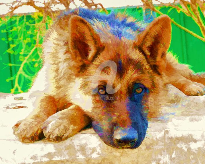 """Painting titled """"Max"""" by Benjamin, Original Art, Other"""