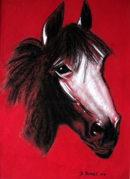 Tête de cheval N° 25 - Painting,  70x50x2 cm ©2004 by bernard Danel -                                                        Figurative Art, Other, Animals