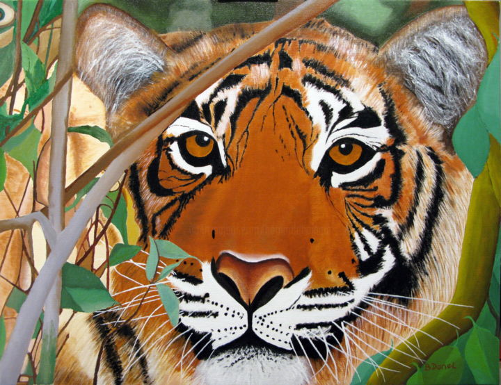 Tigre du Bengal N° 27 - Painting,  50x60x2 cm ©2005 by bernard Danel -                                                            Figurative Art, Other, Animals, L'ART, Animalier, sauvage, tigre, bengal
