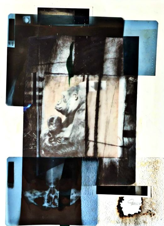 Angoisse Prilmalienne II - Collages,  27,6x19,7 in, ©2003 par Bertrand TARDIEU -                                                                                                                                                                          Abstract, abstract-570, Animaux