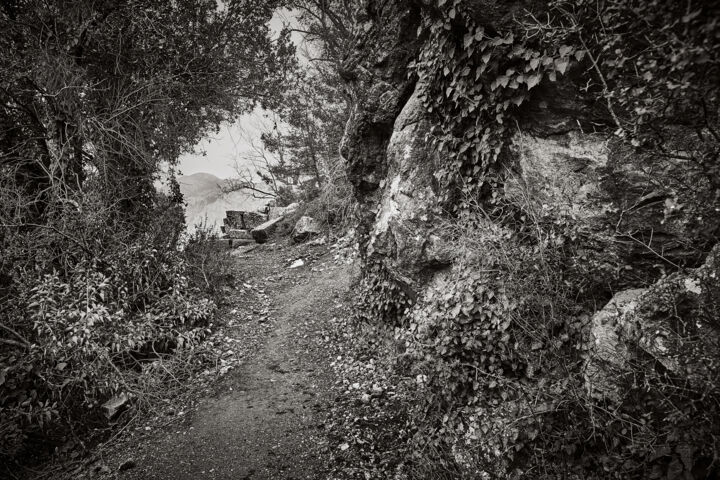 """Photography titled """"The Way Home From T…"""" by Georgy Bezborodov, Original Art, Digital Photography"""
