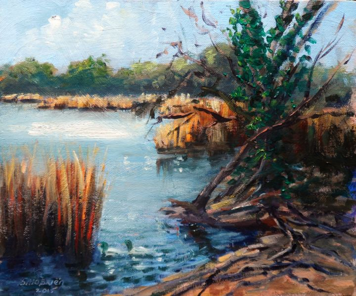 Swanpool, Falmouth, Cornwall. - Painting,  10x12 in ©2015 by BILL O'BRIEN -                                                            Impressionism, Canvas, Landscape, the swan pool, falmouth, cornwall