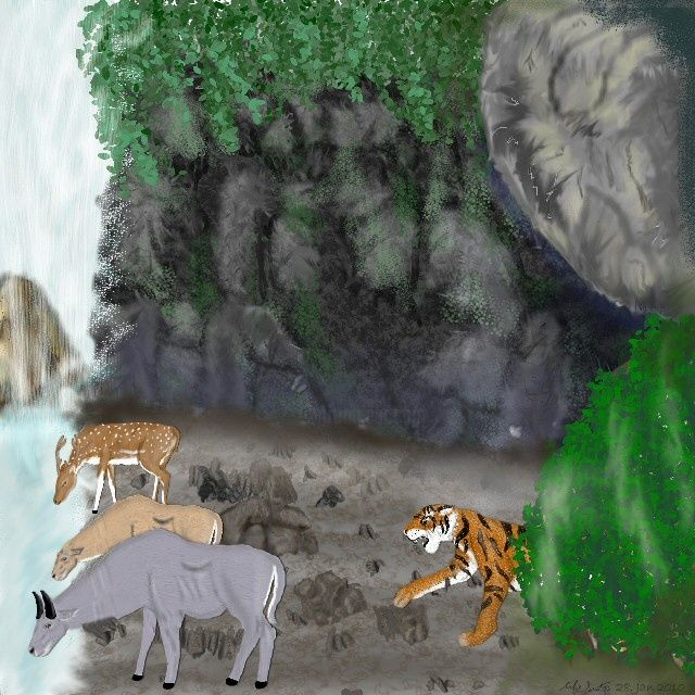 Tiger's Favorite Waterfall - Painting,  8x10 in, ©2010 by Birdman -                                                                                                                                                                          Figurative, figurative-594, endangered tiger stalking nilgai & chital deer at a waterfall drinking spot in India