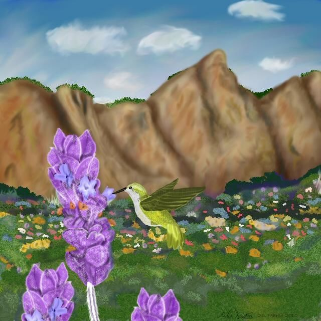 Hummingbird Meadows - Painting,  8x10 in, ©2010 by Birdman -                                                              Painting of a hummingbird feeding at a lavender flower