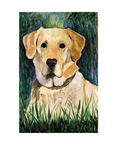 Golden Retriever Shorthair Canine Painting By Betty James Artmajeur