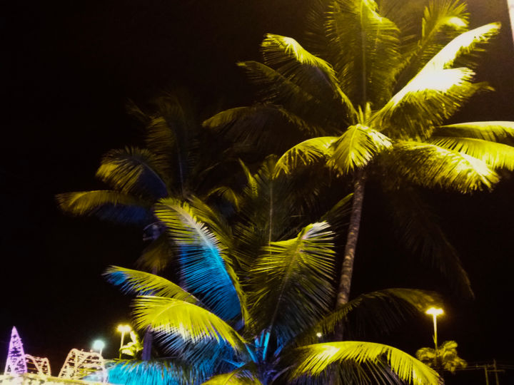 Tropical Night - Photography, ©2019 by Black Diamond Artworks -                                                                                                                                                                                                                                                                                                                                                                                                                                                                                                                                                                          Other, Love / Romance, Business, Spirituality, Nature, Cityscape, Natureza, Office, Paisagem, Noite, Luz, Fotografia