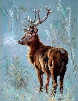 cerf - Painting,  11.8x7.9 in, ©2006 by Ster -                                                                                                                                                                          Abstract, abstract-570, pastel animaux cerf