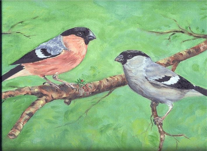 bouvreuils - Painting,  11.8x15.8 in, ©2002 by Ster -                                                                                                                                                                          Figurative, figurative-594, peinture huile animaux oiseaux bouvreuils