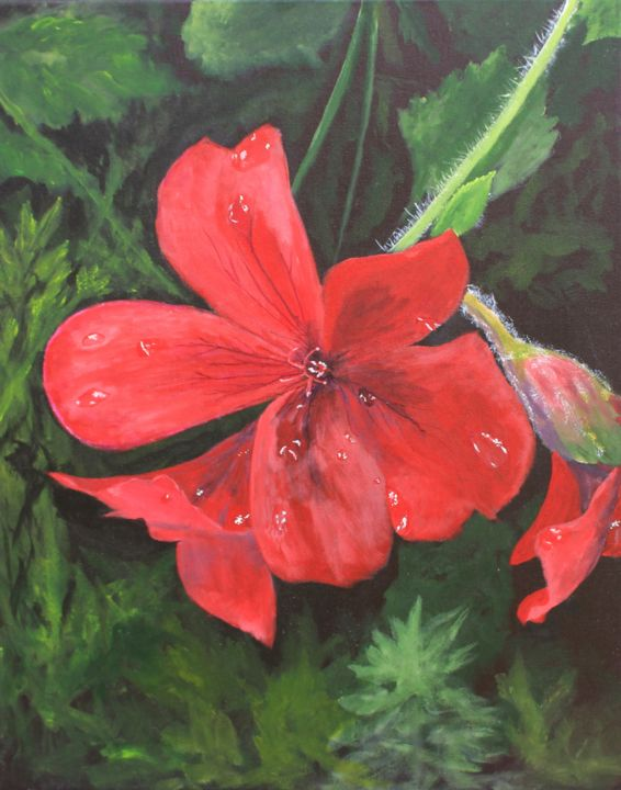 Irish Red Beauty - Painting,  20x16x0.5 in ©2019 by Robert Clark -                                            Realism, Botanic, red flower, floral