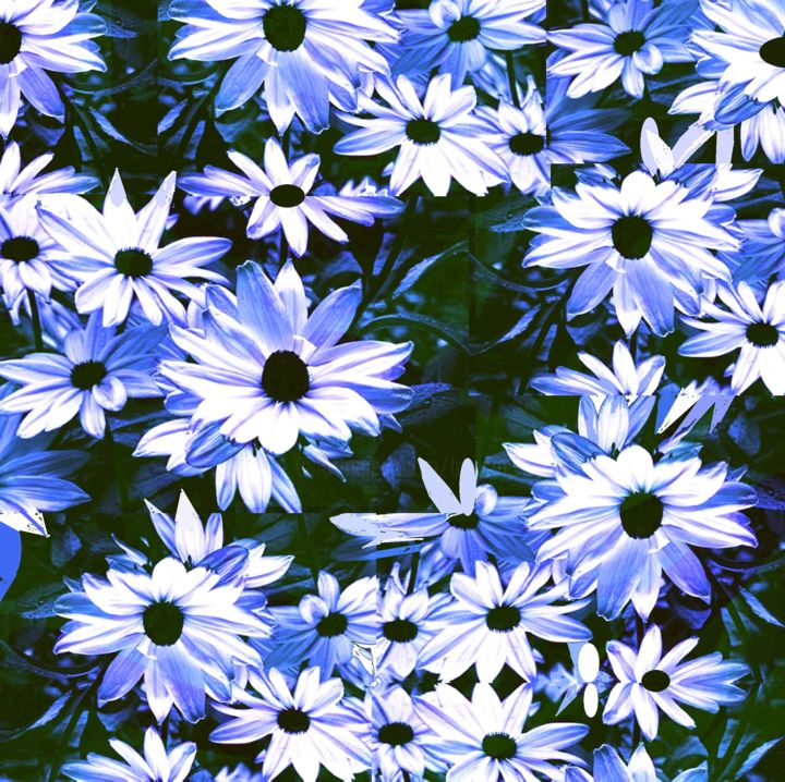 Field of  flowers - Digital Arts,  10x10x0.1 in ©2016 by Peter Jalesh -                                                                                    Abstract Art, Figurative Art, Canvas, Paper, Flower, white and blue, landscape