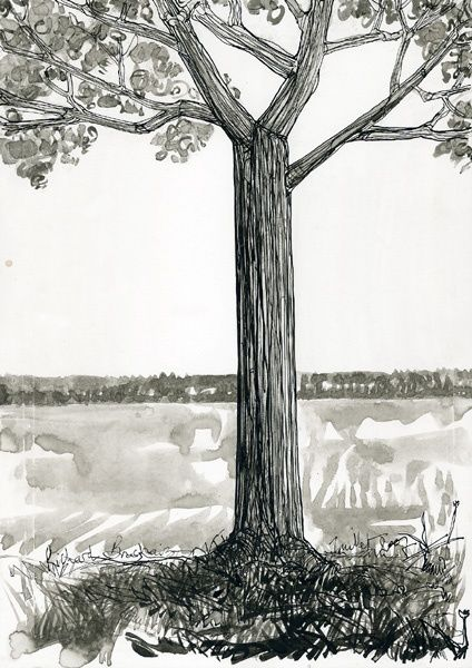 D17 - série des arbres - Drawing,  11.4x8.3 in, ©2007 by Richard Brachais -                                                              Black and White