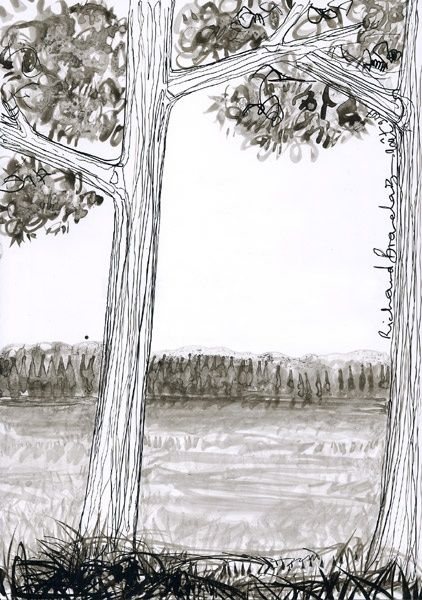 D20 - série des arbres - Drawing,  11.4x8.3 in, ©2007 by Richard Brachais -                                                              Black and White