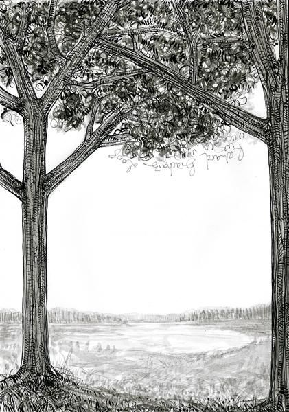 D26-série des arbres - Drawing,  11.4x8.3 in, ©2008 by Richard Brachais -                                                              Black and White