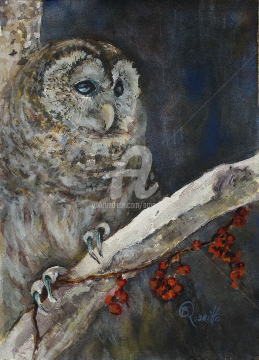 The Edge of the Night - Painting,  1.5x10x14 cm ©2014 by B.Rossitto -                                                            Realism, Paper, Animals, owl, Owl on the Edge of the Night, watercolor painting, animal, B.Rossitto fine art, Bird Painting
