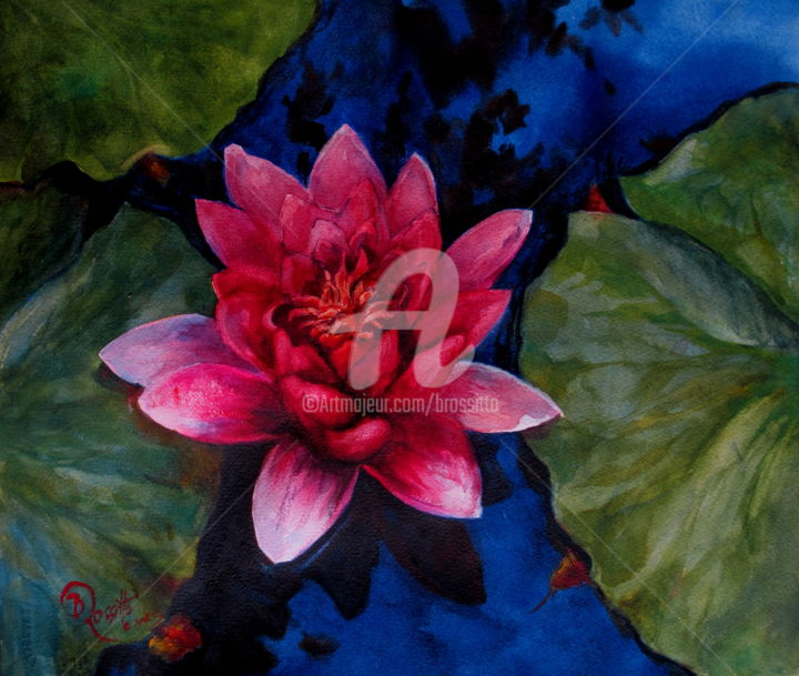 pink waterlily - ©  Pink, Waterlily, watercolor painting, BRossitto, Connecticut Women Artists, Nature, Botanical, Water Garden painting Online Artworks
