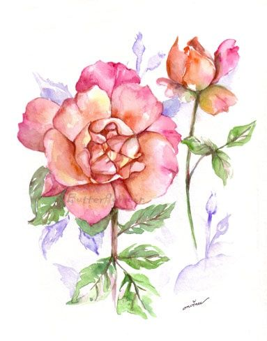 Rose - Painting,  12.6x9.5 in, ©2006 by Butterflymoons -