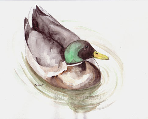 Canard - Painting, ©2005 by Butterflymoons -