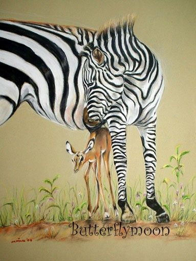 Zebre et biche - Drawing,  24.8x16.9 in, ©2004 by Butterflymoons -