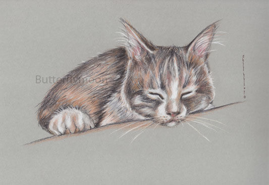 chat6 - Drawing,  9.5x13.4 in, ©2010 by Butterflymoons -