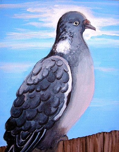 Gray Pigeon - Painting,  10x8 in ©2007 by Calzephyr -                            Realism, pigeon, gray, blue, nobody, outdoors, day