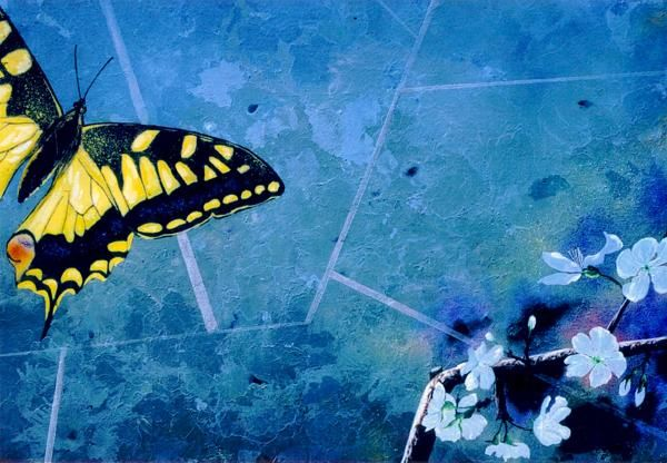 Butterflyzone - Pittura,  19,7x31,5 in, ©2009 da Luigi Cataldi -