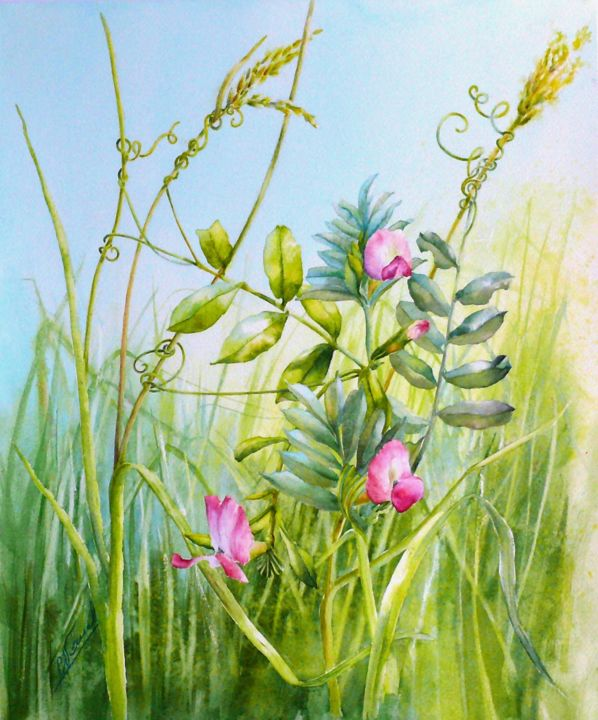Just a little help from my friends - Painting,  18.1x15.8 in, ©2014 by Catherine Vanel -                                                                                                                                                          Nature, vesce des prés, herbes