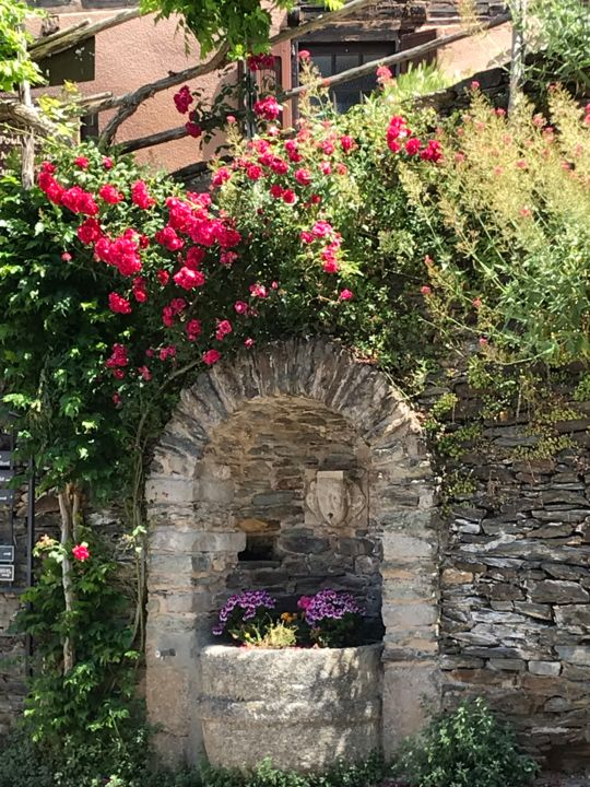 FONTAINE FLEURIE - Photography ©2019 by Cathou-bazec -                                            Photorealism, Flower, roses et fontaine