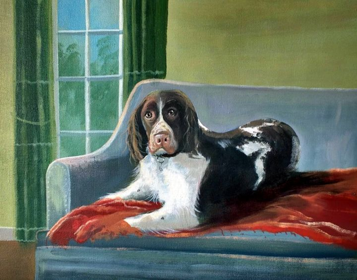 A Dogs Life - Painting,  16x20x2 in, ©2018 by Cathal O Malley -                                                                                                                                                                                                                                                                                                                                                                                                                                                                                                                                              Figurative, figurative-594, Animals, dog, life, couch, spaniel, brown, light, window, wall