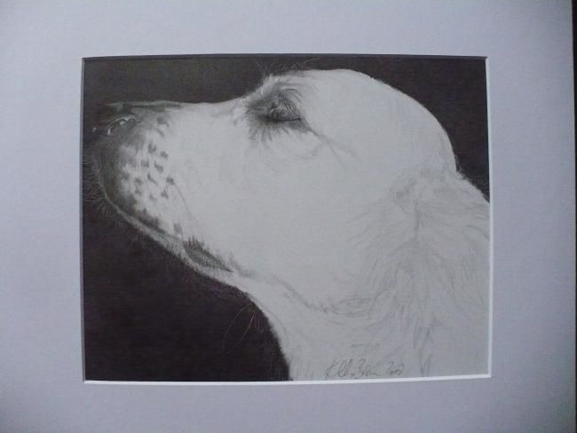 """Drawing titled """"Aloof!"""" by Kelly, Original Art,"""