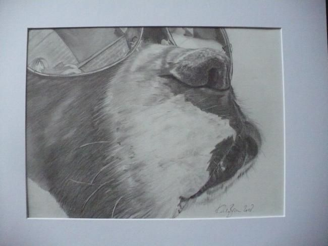 """Drawing titled """"Cool Boxer!"""" by Kelly, Original Art,"""