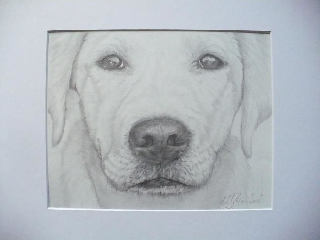 """Drawing titled """"Focused!"""" by Kelly, Original Art,"""