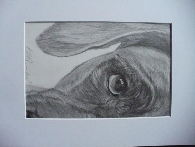"""Drawing titled """"perplexed"""" by Kelly, Original Art,"""