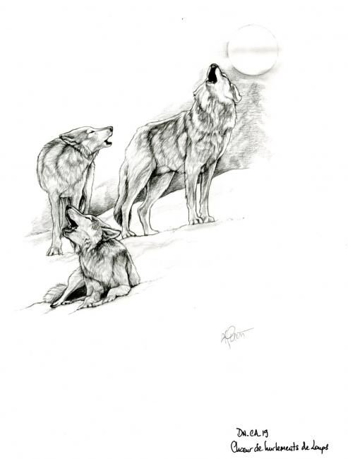 Hurlements de loups - Drawing,  29x21 cm ©2006 by Cécile Aquisti -