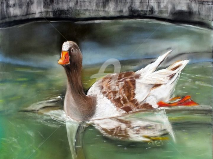 Regard en Coin - Drawing,  29x39 cm ©2015 by Chantal LE MESLE -                                                            Realism, Paper, Animals, Canard, coin, jardin, pastel, Chantal Le Mesle, eau, bassin, parc