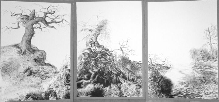 Triptyque - Drawing,  68.9x118.1 in, ©2016 by Charles Dubus -                                                                                                                                                                                                                                                                                                                                                                                                                                                                                                                                                                                                                                                                                                          Tree, study, sketching, arbre, encre, lac, lake, tryptique, grand format, plume, nature, mythologie, Nord, trees, North