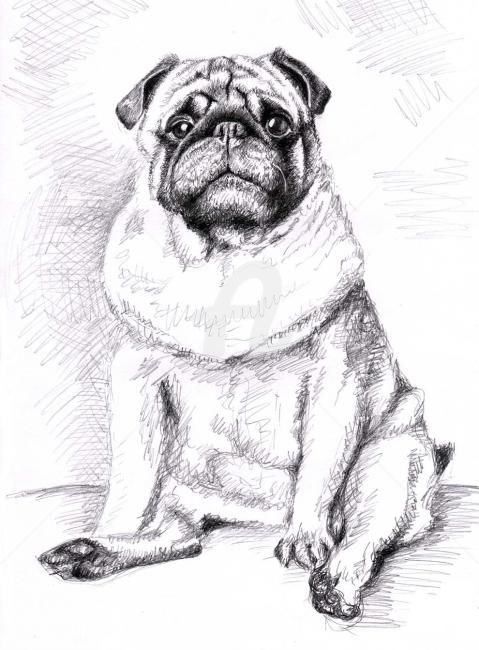 Pug Anton Painting By Arts Dogs Artmajeur