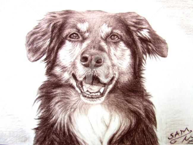 Sam - Painting,  7.9x11.8 in, ©2007 by Arts & Dogs -                                                                                                                                                                          Figurative, figurative-594, hund dog chien brown braun kohle charcoal portrait tier animal drawing fur fell