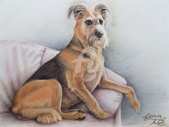 Lena - Painting, ©2008 by Arts & Dogs -                                                                                                                                                                          Figurative, figurative-594, hund dog chien animal tier fell fur schnauzer snout pastel