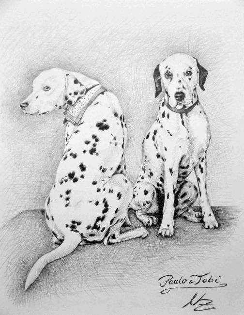 Dalmations - Painting,  11.8x7.9 in, ©2008 by Arts & Dogs -                                                                                                                                                                          Figurative, figurative-594, hunde dog dalmatiner dalmation chien graphite animal tier