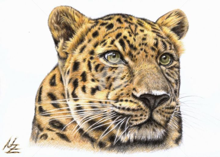 Leopard - Painting, ©2013 by Arts & Dogs -                                                                                                                                                                                                                                                                                                                                                                                                                                                                                                                                                                                                                                                                                                                                                                                                                  Figurative, figurative-594, katze, cat, zeichnung, drawing, portrait, porträt, tier, pet, pastell, kätzchen, kitten, fell, chat, raubkatze, leopard