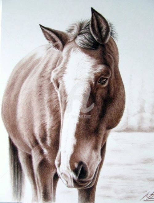 Brown Horse - Painting, ©2013 by Arts & Dogs -                                                              horse