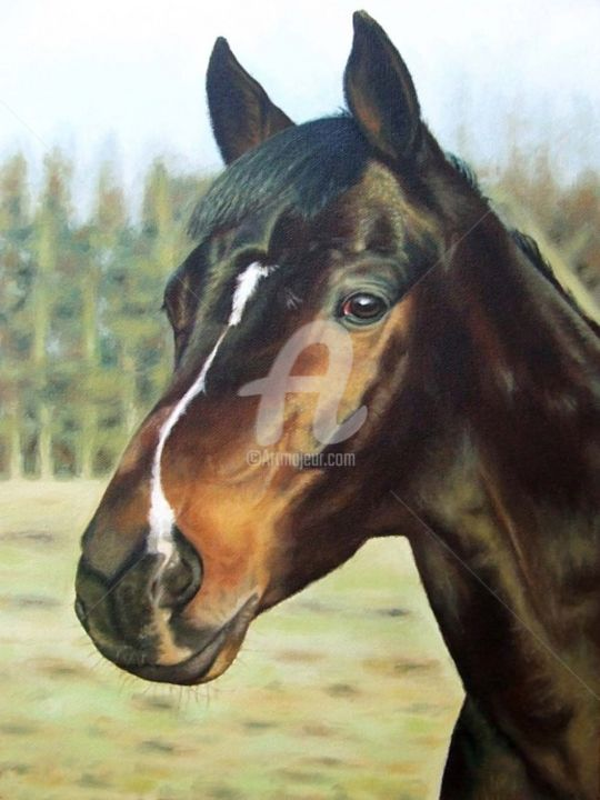 Russian Horse - Painting, ©2013 by Arts & Dogs -                                                                                                                                                                                                                                                                                                                                                          Figurative, figurative-594, horse, portrait, pferd, cheval, painting